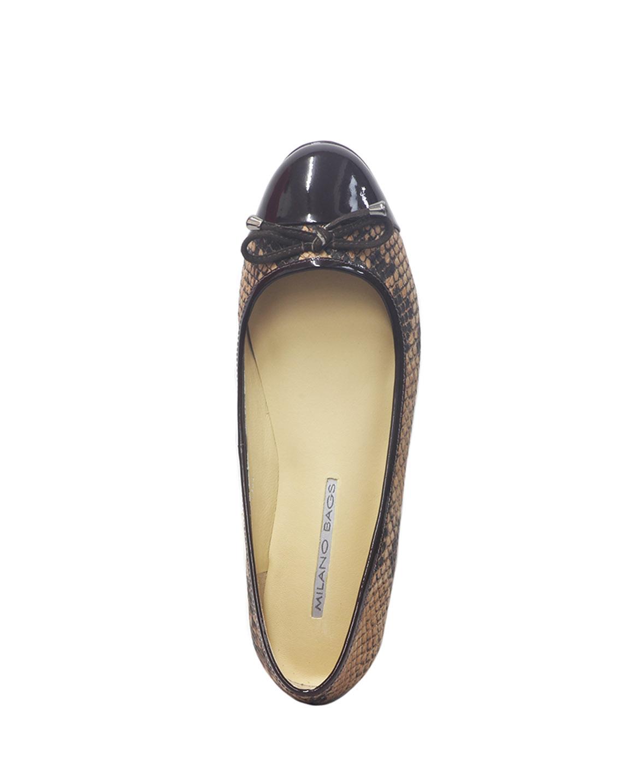 Calzado Ballerina FR-6922 Color Marron